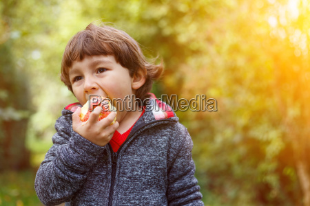 little young child apple eat text