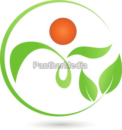 human plant leaves naturopath logo