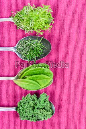 vitamine verschiedene kraeuter auf loeffeln
