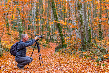 photographer take pictures of beautiful