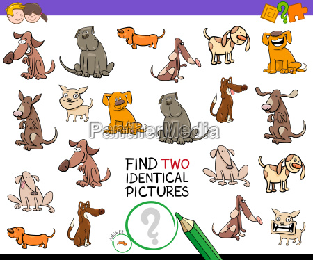 find identical cartoon pictures of dogs