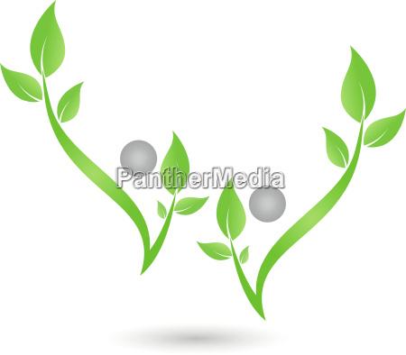 people leaves plants flowers