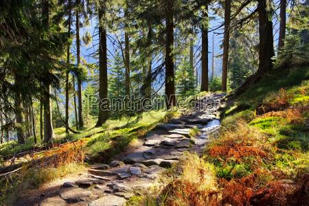 wanderweg im riesengebirge hiking trail