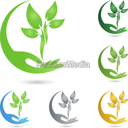 plant leaves hand naturopath logo