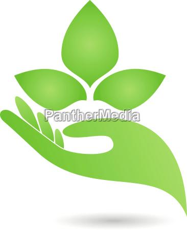 hand leaves naturopaths logo