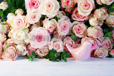 tender roses for mothers day