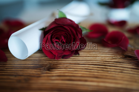 letter with rose for valentines day
