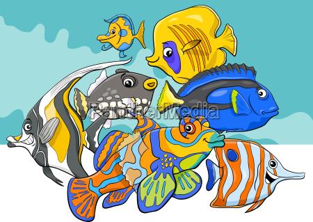 tropische fische meerestier tier zeichen gruppe