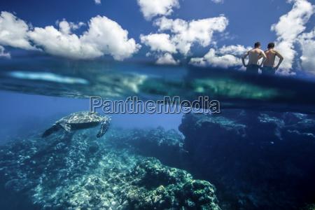 underwater split level view of hawaiian