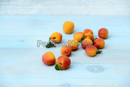 stilleben blau orange apfelsine pomeranze blatt