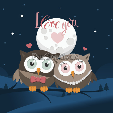 couple of owls in love at