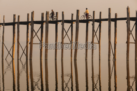 two people cycling across tall teak