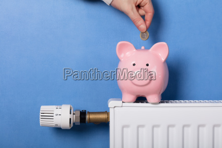 person inserting coin in piggy bank