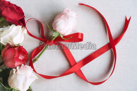 roses and red ribbon in shape