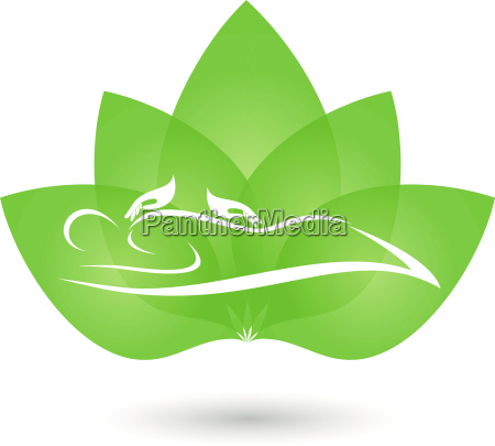 human hands plant massage alternative practitioner