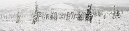 panorama landschaft der ersten schneefaelle auf