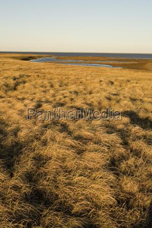 umwelt horizont braun braeunlich bruenett arktis