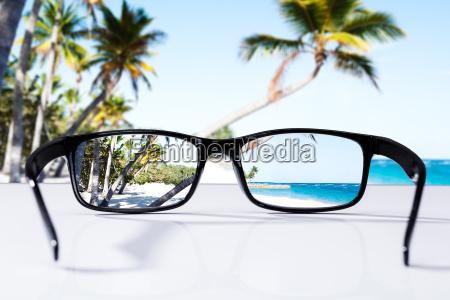 beach and palm trees seen through