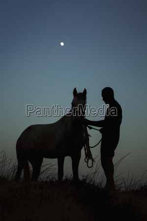 silhouette man standing with horse on