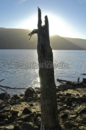 shore of lake st clair at