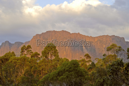 cathedral mountain in the morning light