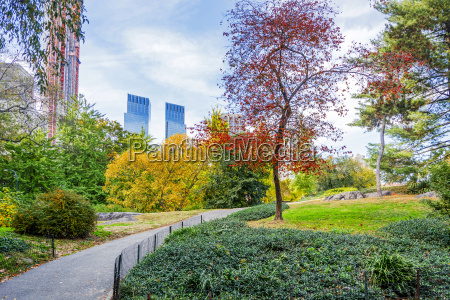 view of central park in new