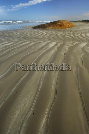 coastal landscape in coorong national park