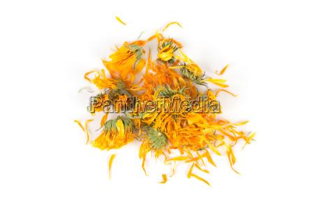 zumachen schliessen orange apfelsine pomeranze tee