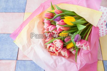 bunte tulpen in seidenpapier