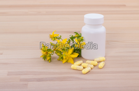 blooming st johns wort and white