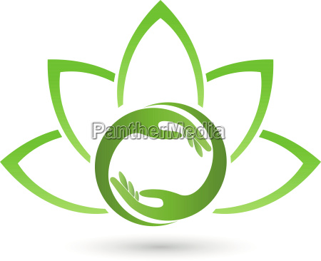 hands and leaves physiotherapy naturopaths logo