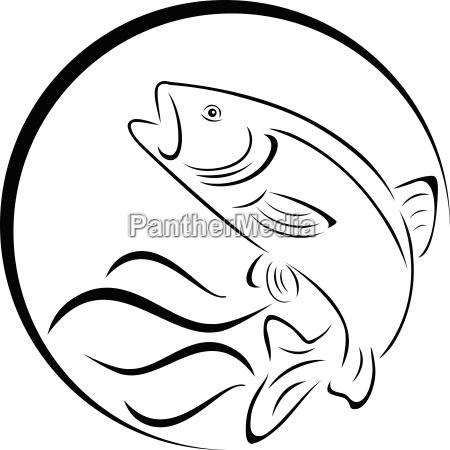 forelle fisch logo angeln und fisch