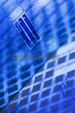 stilleben blau makro grossaufnahme macro makroaufnahme