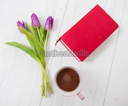 kaffee kaffe kaffeebohne blume pflanze gewaechs