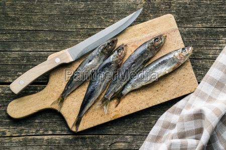 raw sardines fish