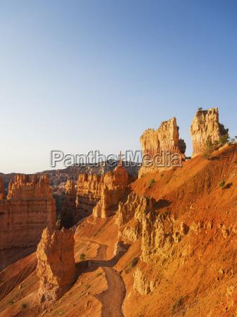 fahrt reisen baum nationalpark usa sonnenlicht