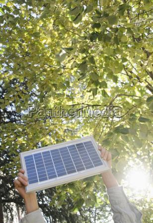 hand baum park outdoor freiluft freiluftaktivitaet