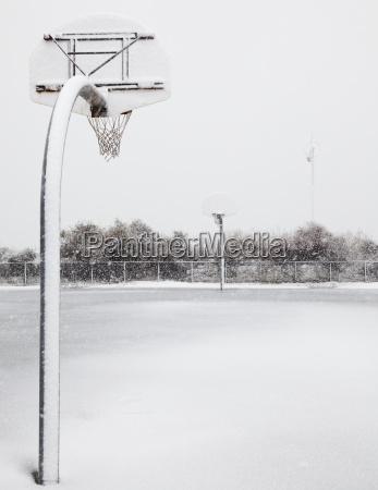 sport baum winter outdoor freiluft freiluftaktivitaet