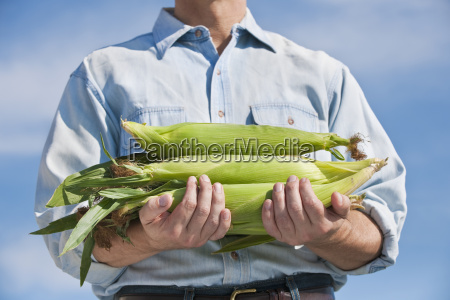 man holding cobs of corn