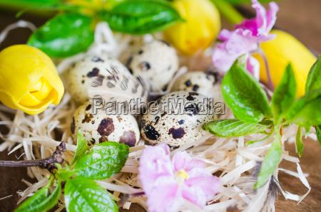 osterkomposition von eiern und fruehlingsblumen