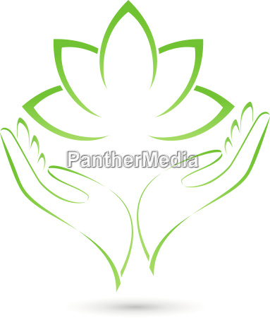 two hands and leavesplantspa and naturopaths