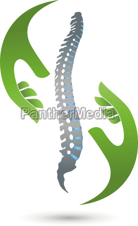 spine hands physiotherapy orthopedics logo