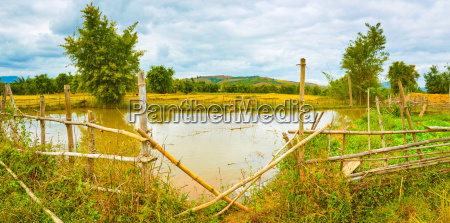 beautiful rural landscape pond on the