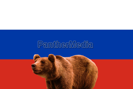 flag of russia and russian bear