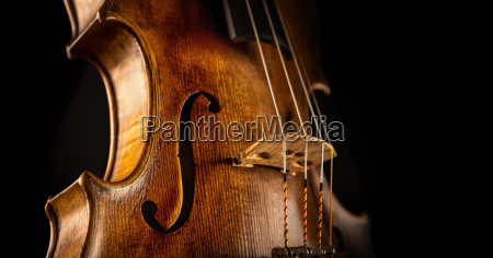 close up of a violine