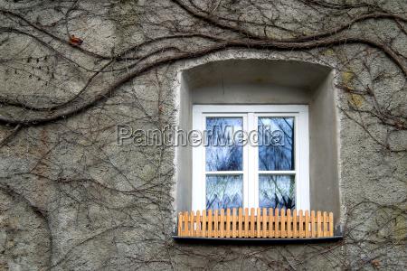 window old house
