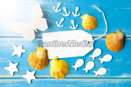 sunny summer greeting card with text