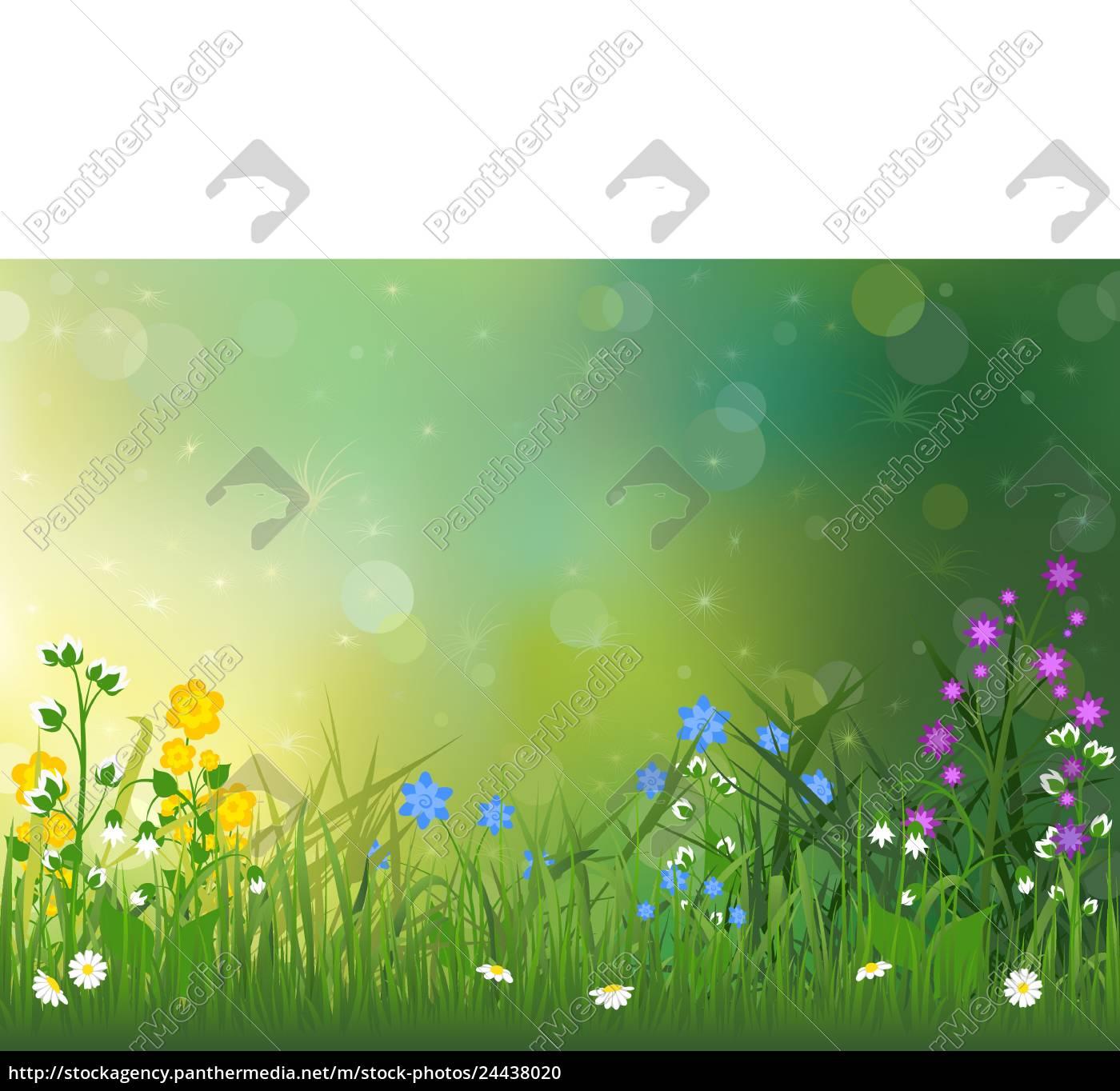 frühlings-hintergrund, mit, bunten, blumen - 24438020