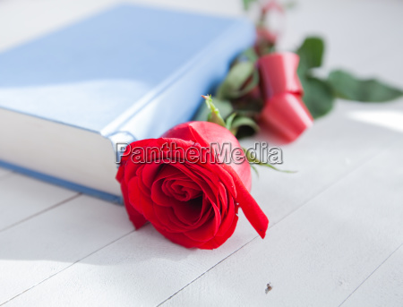 rose and book romance love