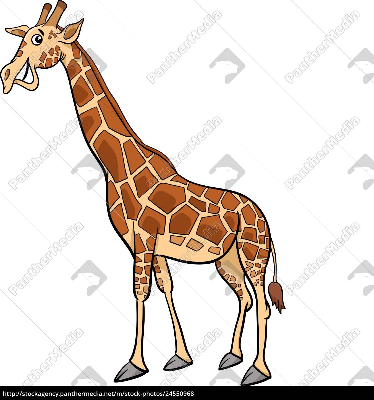 tiercharakter-karikaturillustration, der, giraffe - 24550968
